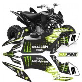 YAMAHA YFM 250 RAPTOR - Monster